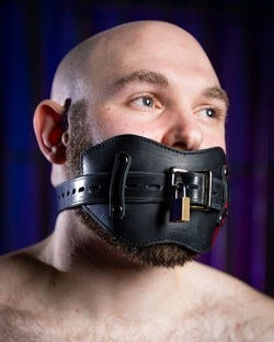 Front Buckle Gag