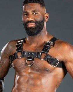 Bulldog Harness